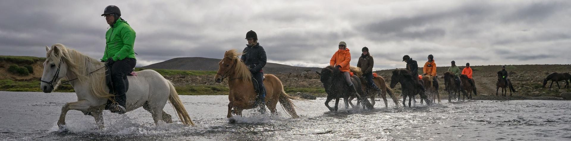 Horse riding in Iceland.